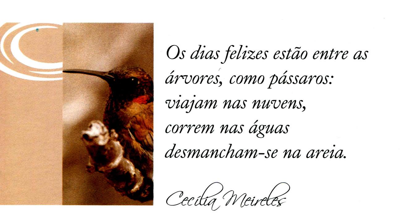 Conhecido CECILIA MEIRELES - Brasil Sempre - Poesia - Cecília Meireles VT62